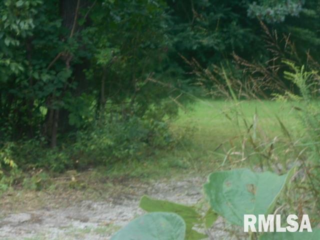 00 Eddyville Blacktop Property Photo - Golconda, IL real estate listing