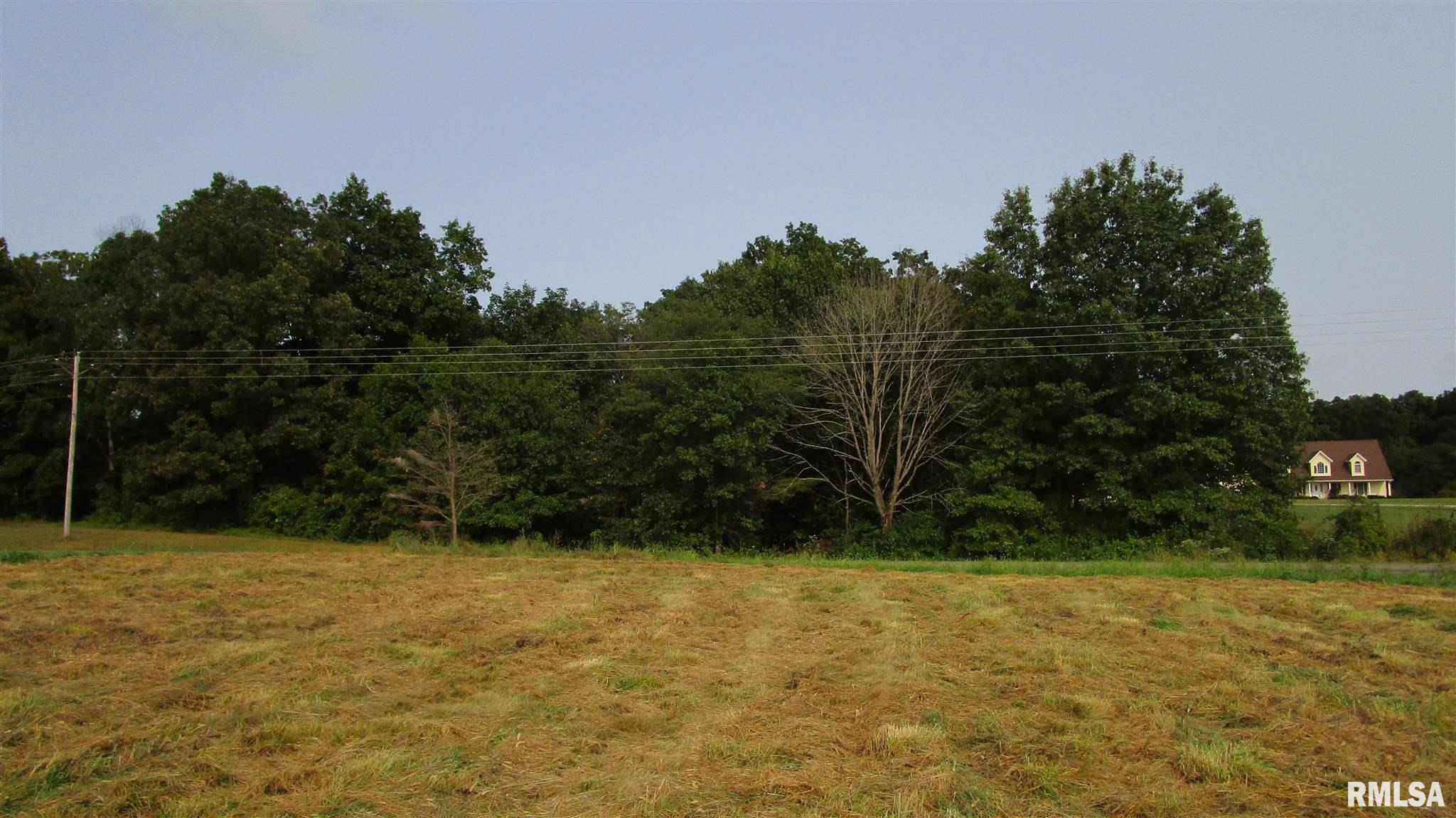 0000D Hanging Rock Property Photo - Flora, IL real estate listing