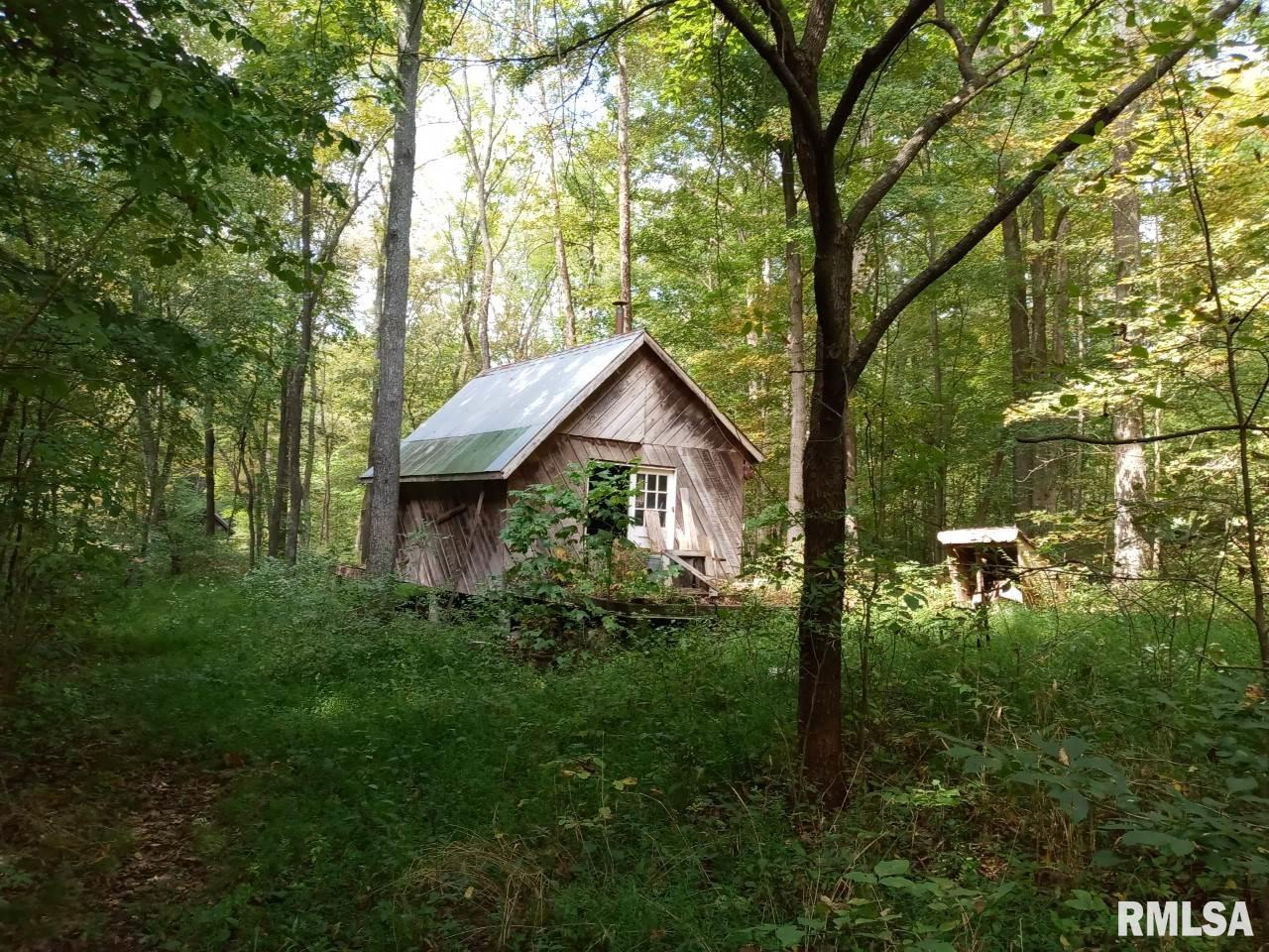 796 N County Line Rd 00 Property Photo - Cobden, IL real estate listing