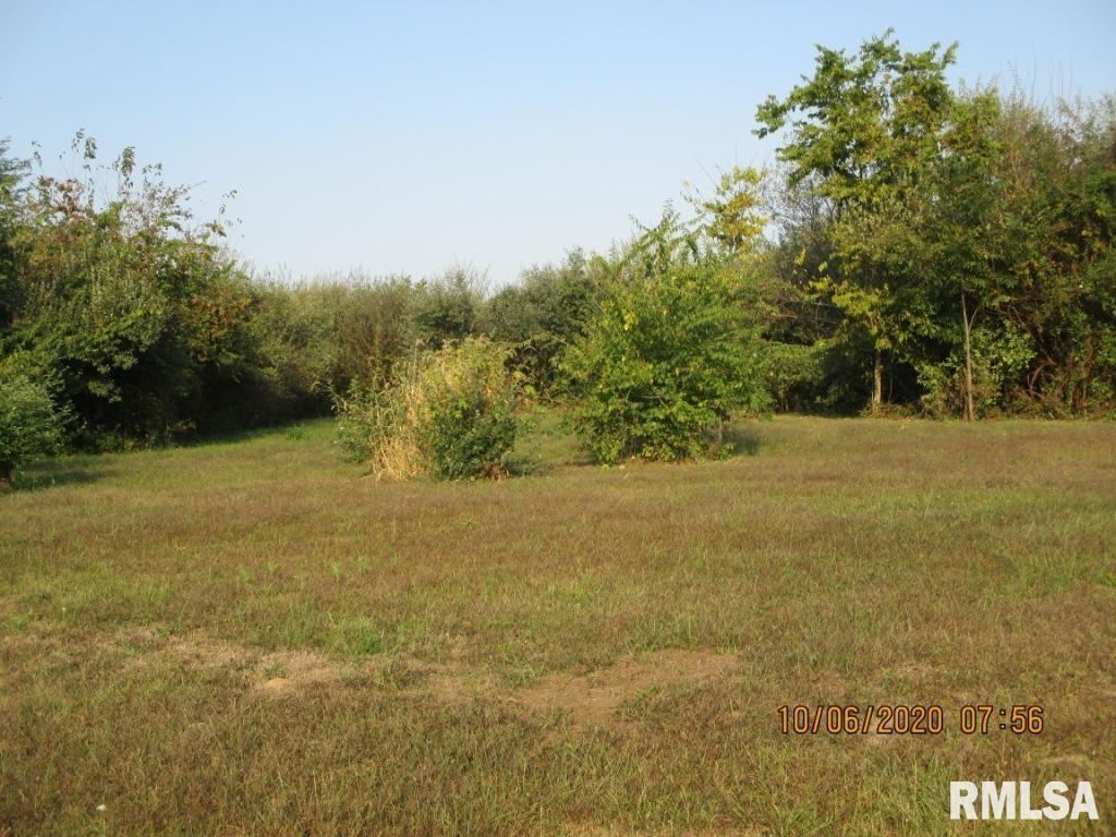 23733 Krupp Property Photo - Walnut Hill, IL real estate listing