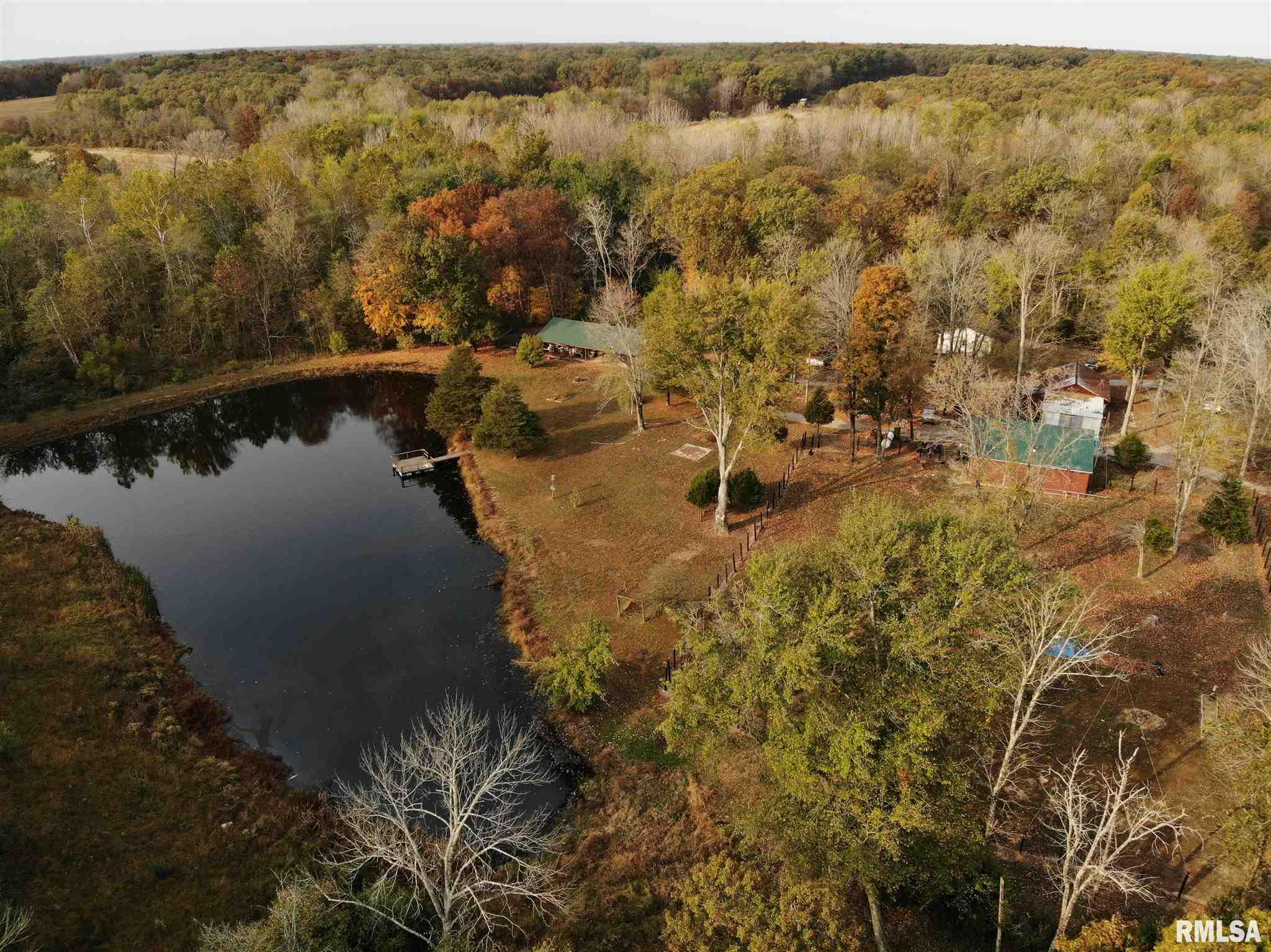 420 County Road 2100 N Property Photo - Xenia, IL real estate listing