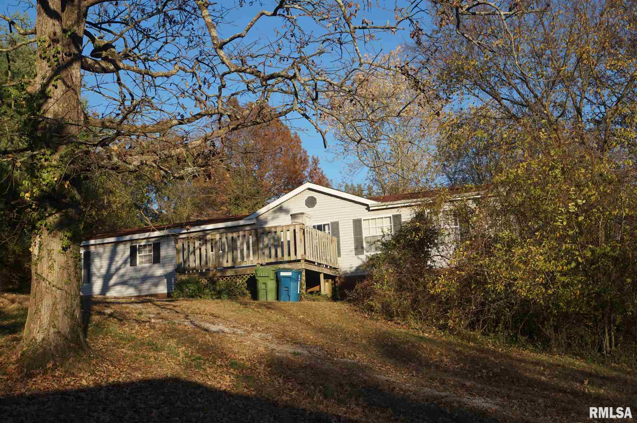 113 Nicholson Property Photo - Cobden, IL real estate listing