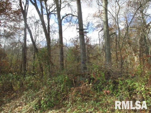 0000 Klomp Property Photo - Iuka, IL real estate listing
