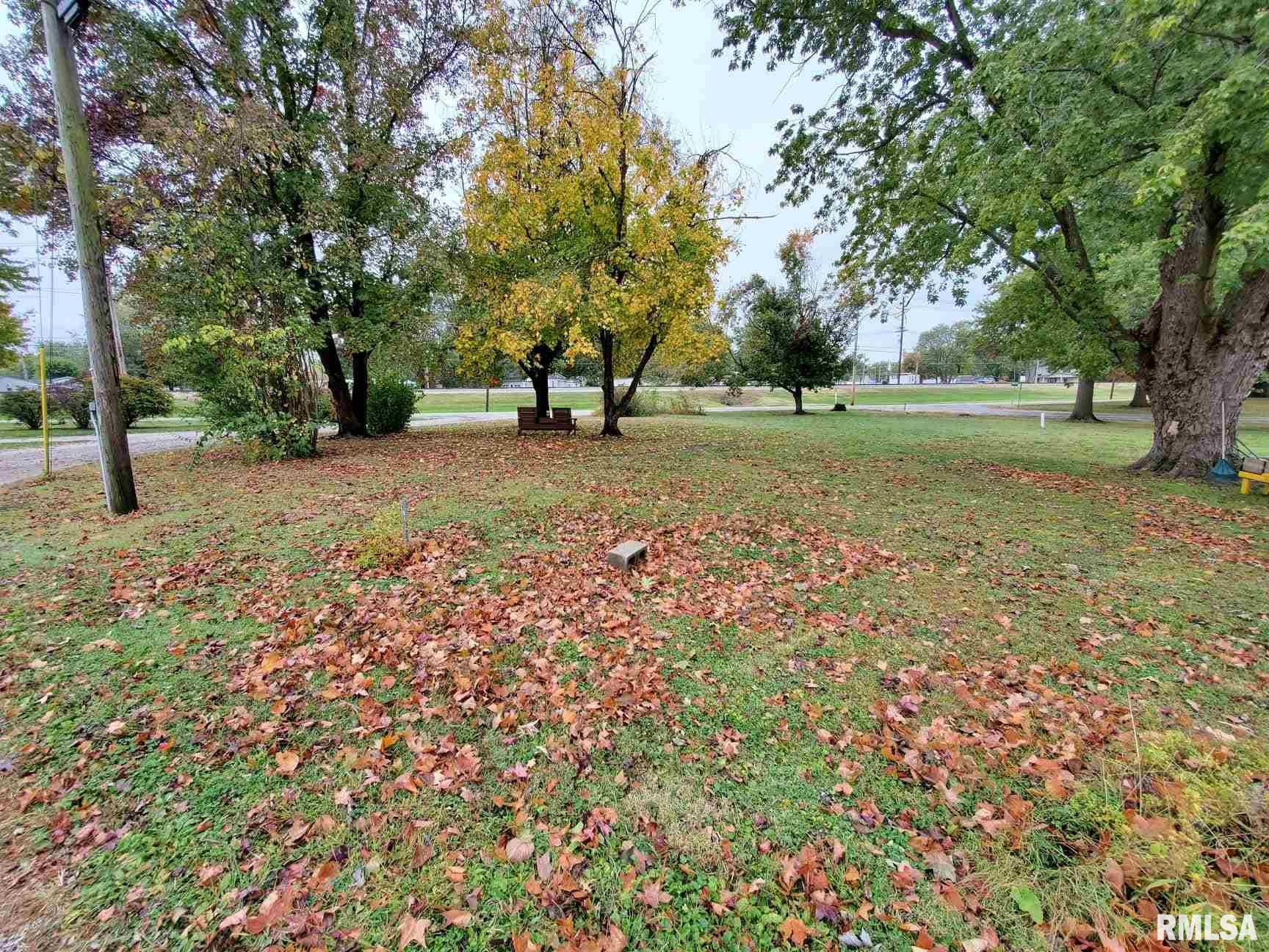 309 S GRACE Property Photo - Marissa, IL real estate listing