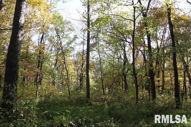0000 River Rock Property Photo - Murphysboro, IL real estate listing