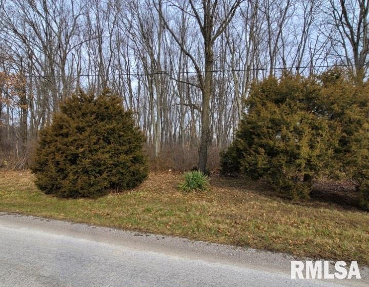0000 NORTH Property Photo - Bluford, IL real estate listing
