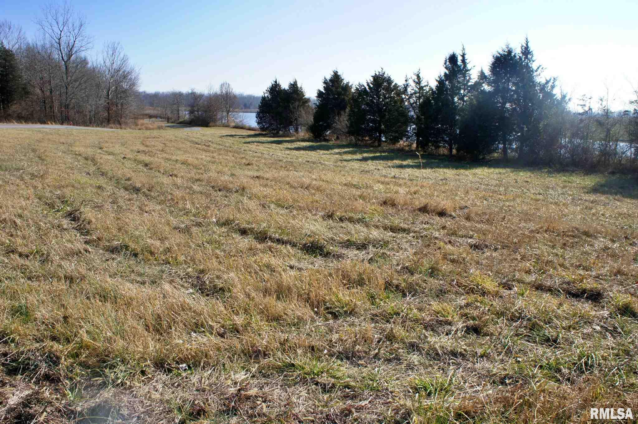 Lot 23 Enyenhausen Property Photo - Creal Springs, IL real estate listing