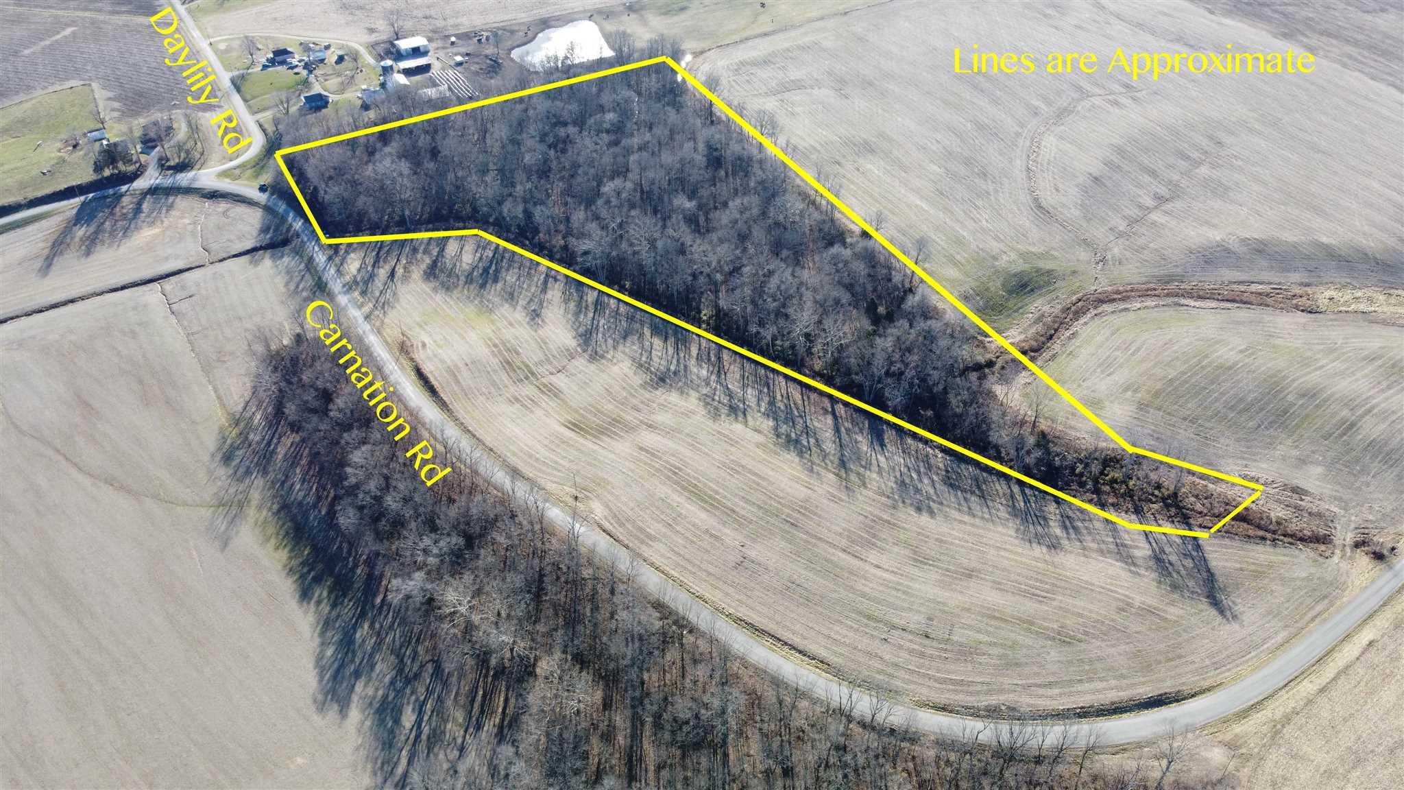 00 Carnation Property Photo - Pinckneyville, IL real estate listing