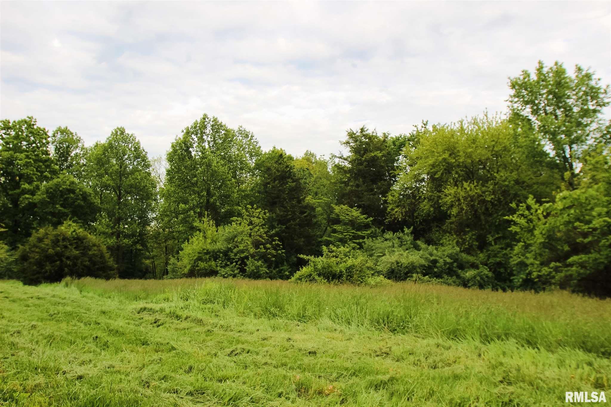 000 BLUEBIRD Property Photo - Cobden, IL real estate listing