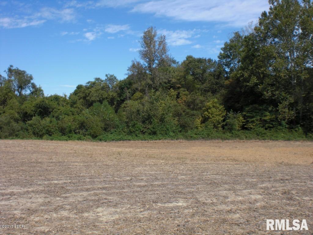 000 Falcon & Hayton School Property Photo - Carbondale, IL real estate listing