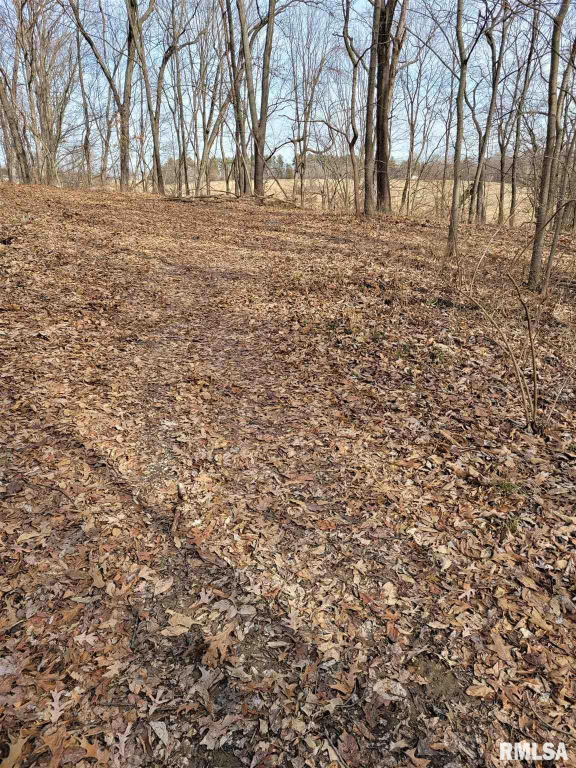 Pontiac ROAD Property Photo - Carmi, IL real estate listing