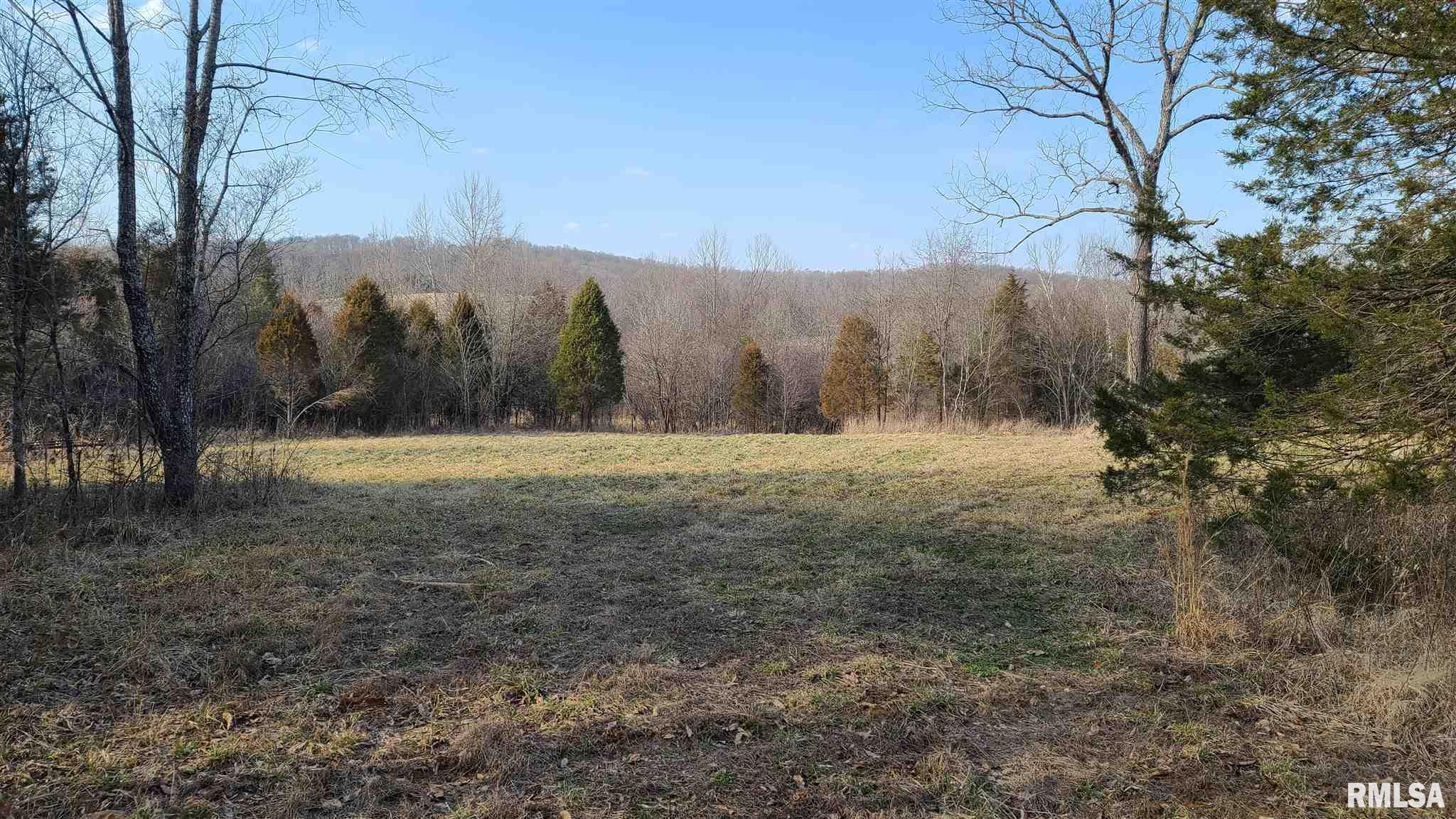 0000 RAGAN Property Photo - Eddyville, IL real estate listing