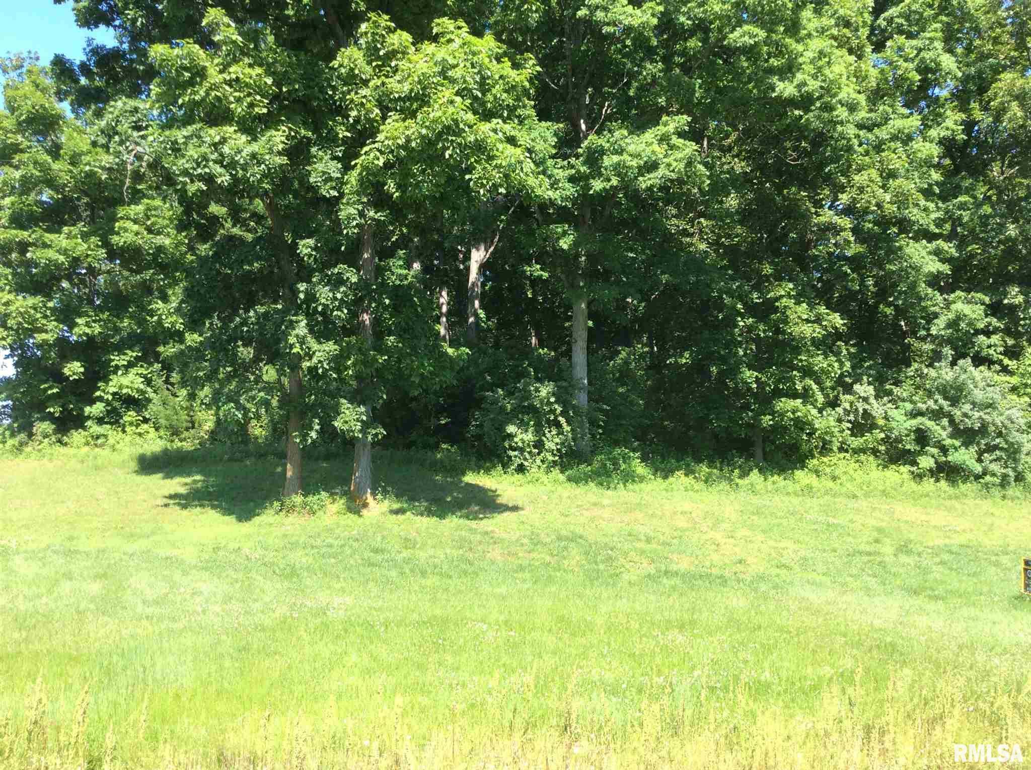 000 N WOODLAWN Property Photo - Woodlawn, IL real estate listing