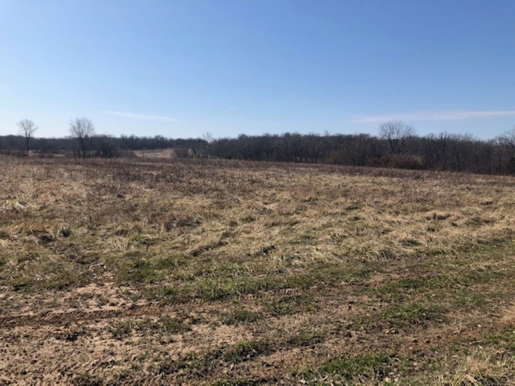 TBD E Duner Property Photo - Bluford, IL real estate listing