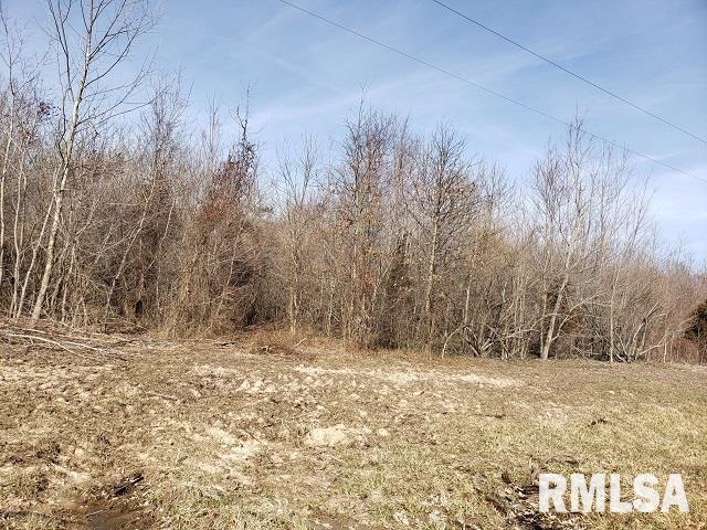 00000 E Divide Property Photo - Bluford, IL real estate listing