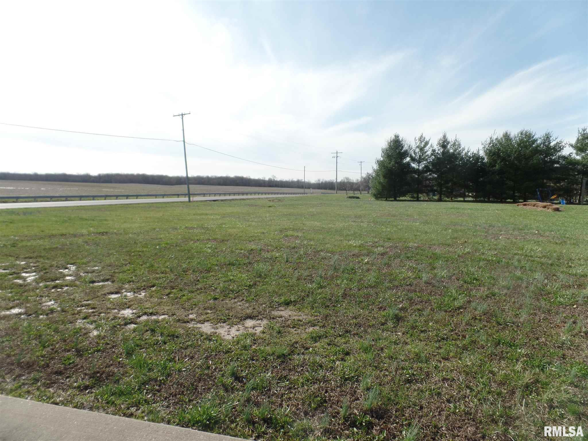 tbd Felts Property Photo - Marion, IL real estate listing