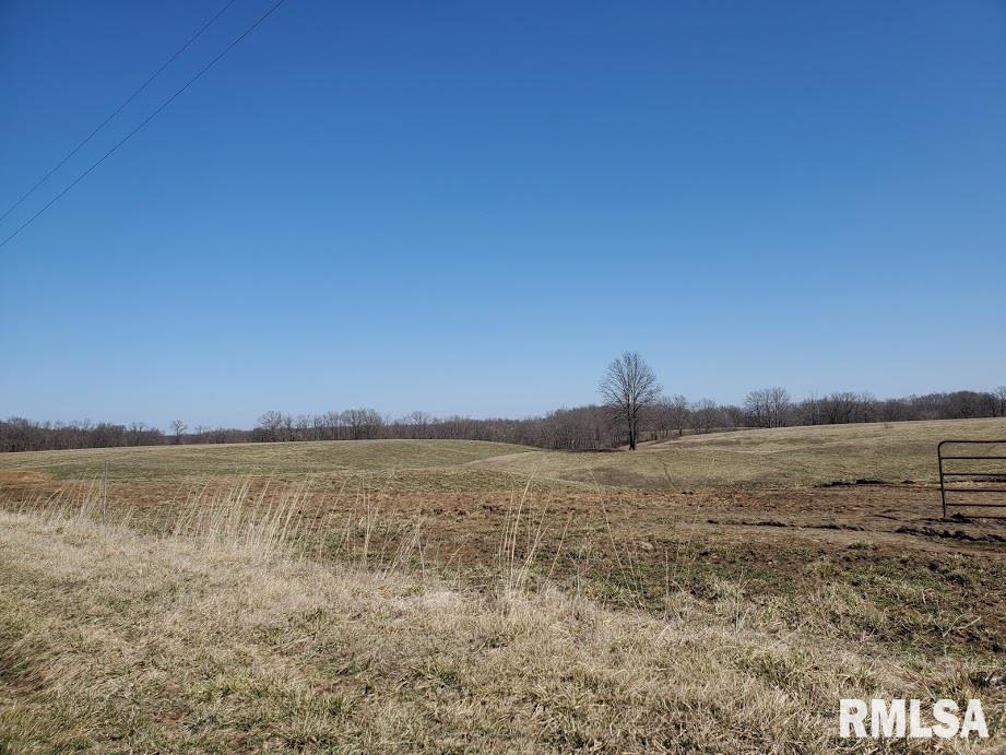 000 Misty Property Photo - Pinckneyville, IL real estate listing