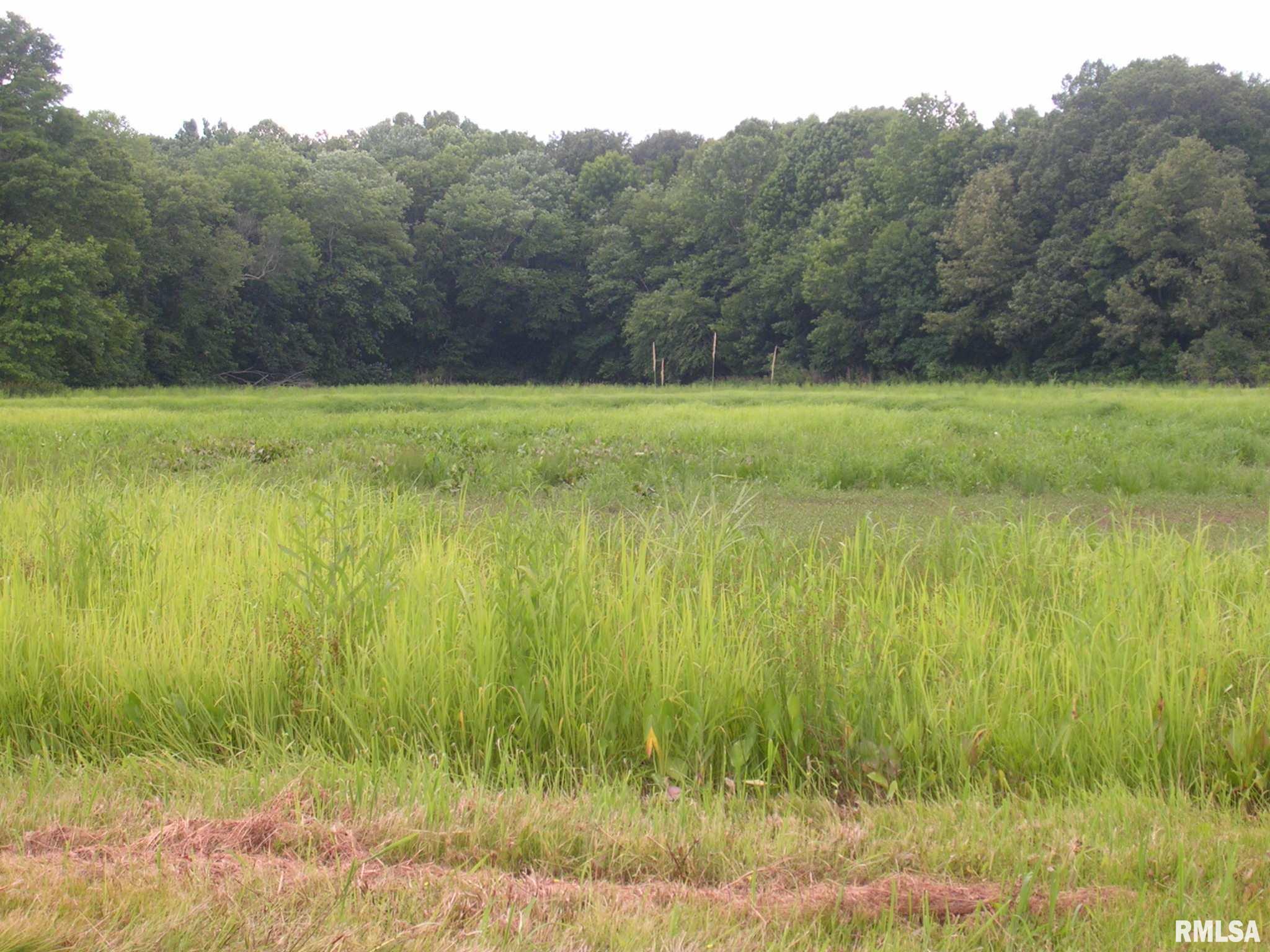 000 Boles Property Photo - Buncombe, IL real estate listing
