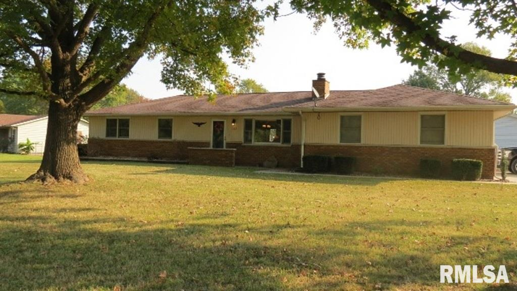302 S LAKE Property Photo - DeSoto, IL real estate listing