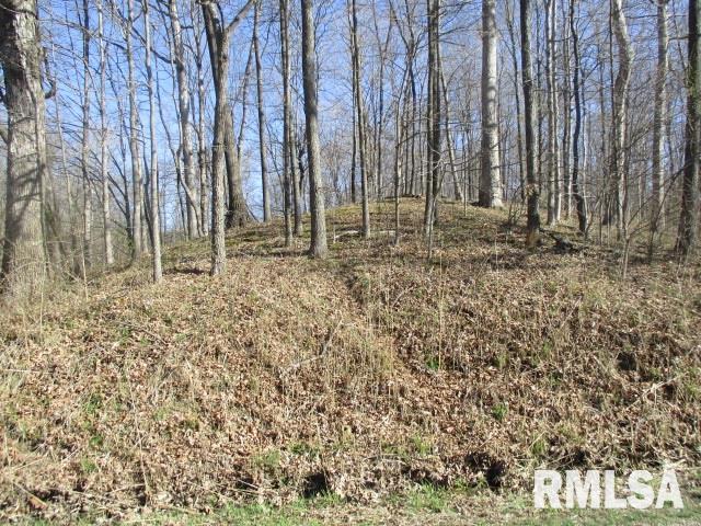 0000 Soper Property Photo - Odin, IL real estate listing