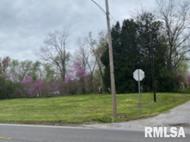 0000 IL Hwy 37 Property Photo - Bonnie, IL real estate listing