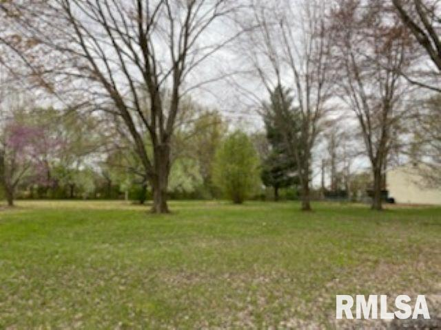 365 W Helekin Property Photo - Bonnie, IL real estate listing