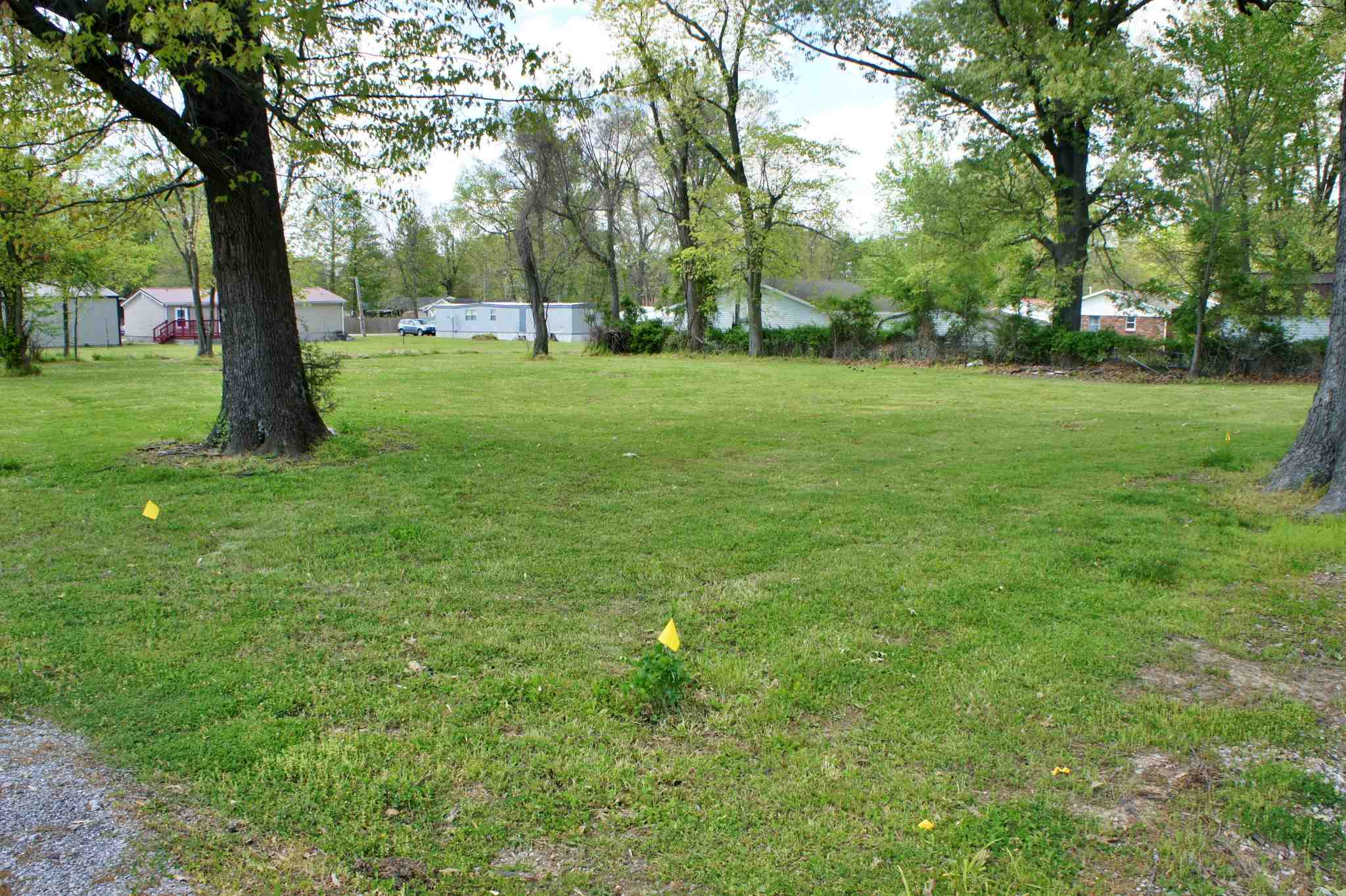000 Pell Property Photo - Brookport, IL real estate listing