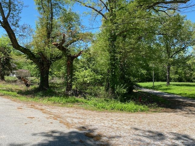2373 SCHOOL HOUSE Property Photo - Mulkeytown, IL real estate listing