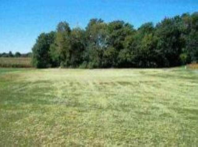 Lot 54 CHEROKEE HILLS Property Photo - Groveland, IL real estate listing