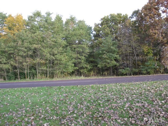Lot 14 GRACE Property Photo - Edwards, IL real estate listing