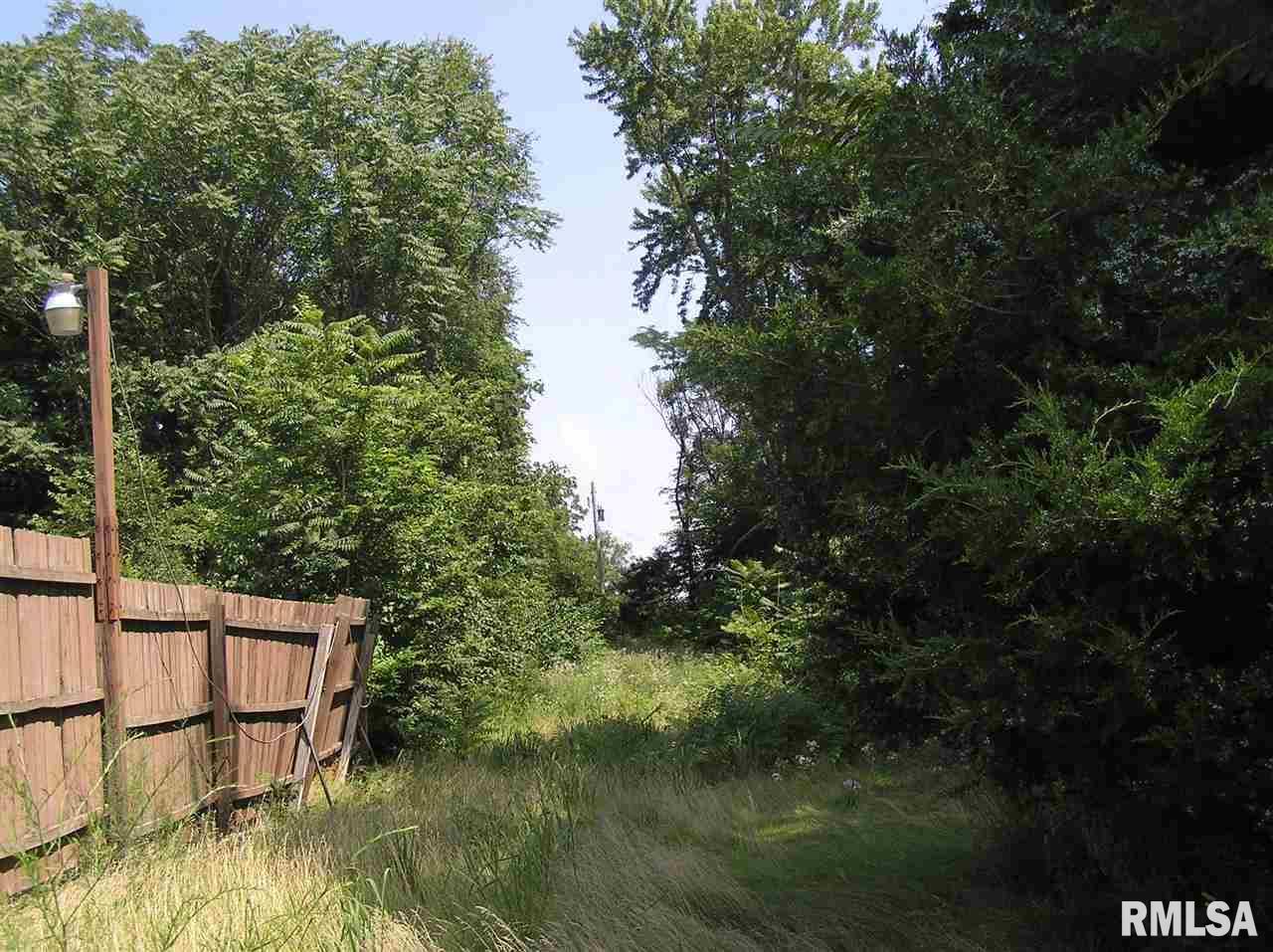 00 BASS Property Photo - Manito, IL real estate listing