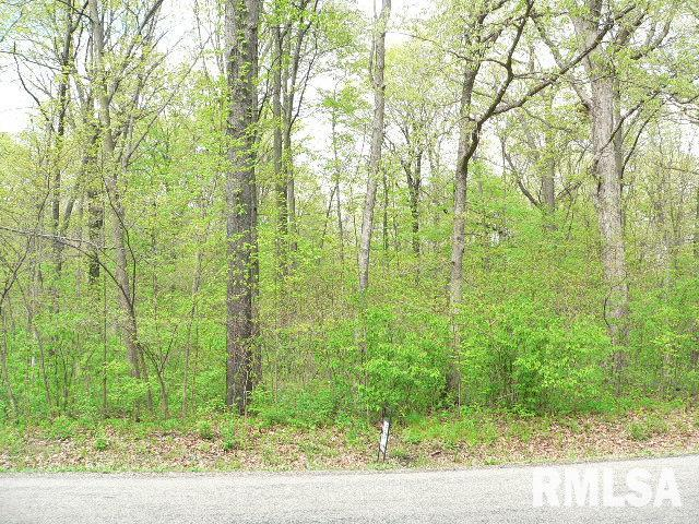 314 BROKEN BOW Property Photo - Sparland, IL real estate listing