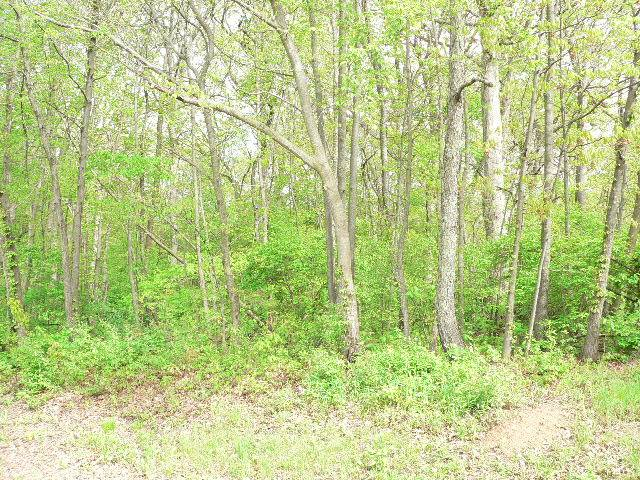 505 Running Bear Property Photo - Sparland, IL real estate listing