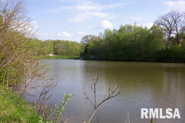 82 BUFFALO RUN Property Photo - Danvers, IL real estate listing
