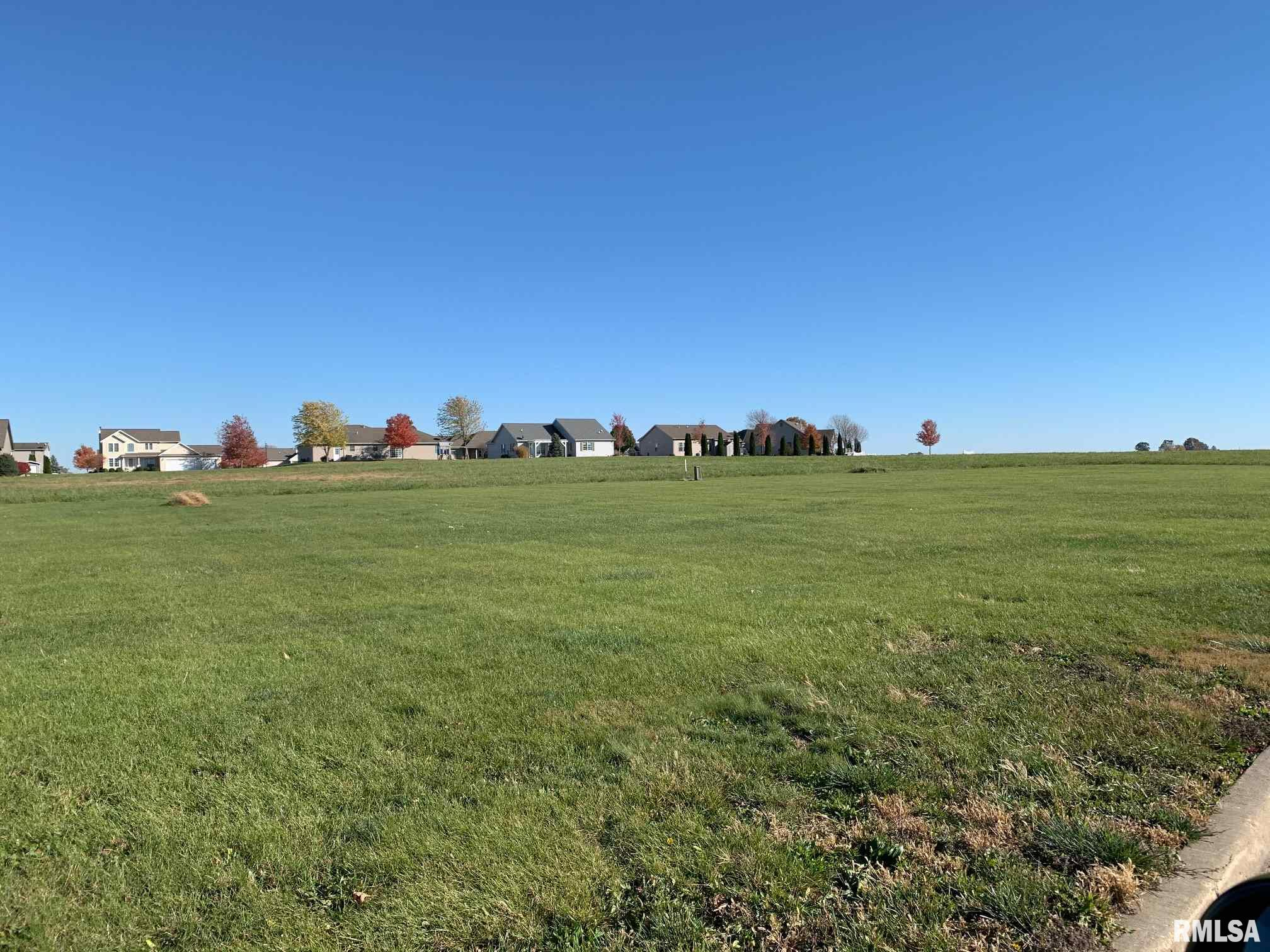 48 CANDLEWICK Property Photo - Minier, IL real estate listing