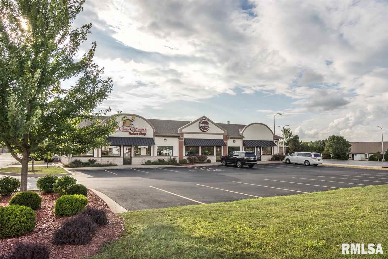 N RADNOR Property Photo - Peoria, IL real estate listing