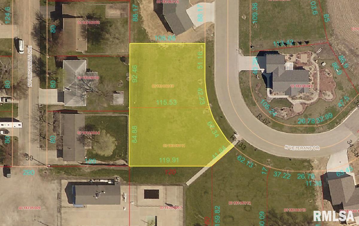 LOT 3 & 4 VETERANS Property Photo - Princeville, IL real estate listing