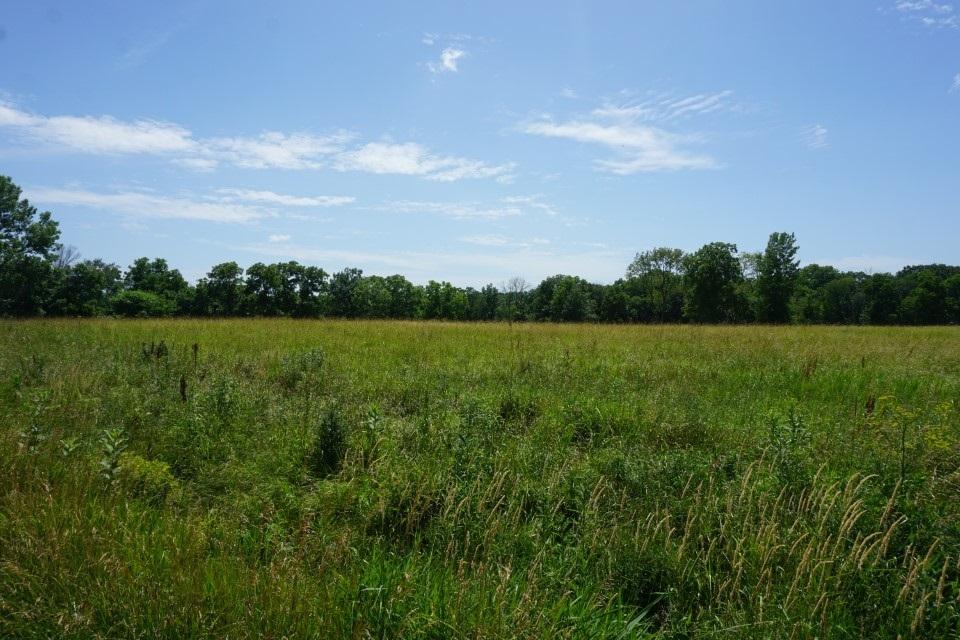 04 E MILLER Property Photo - Edelstein, IL real estate listing