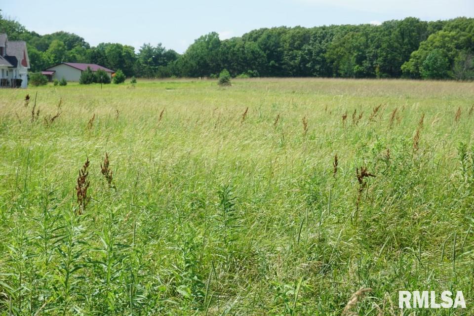 03 E MILLER Property Photo - Edelstein, IL real estate listing