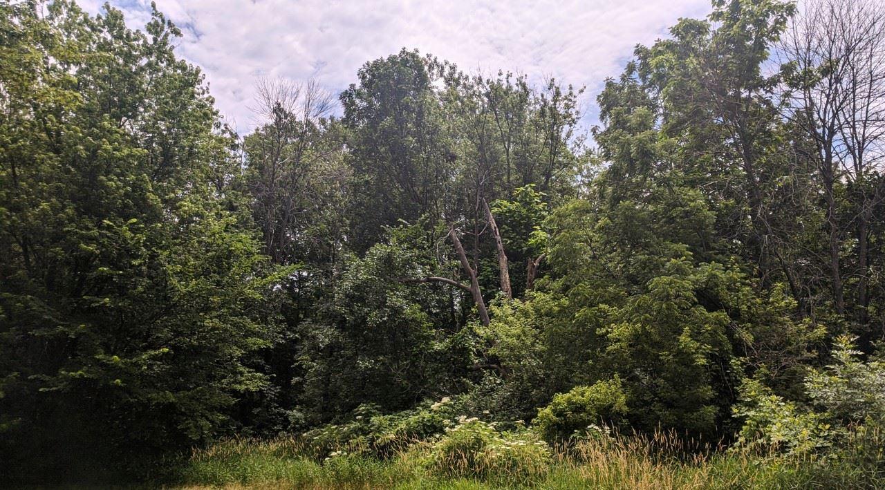 10018 N BLACKSOIL Property Photo - Peoria, IL real estate listing