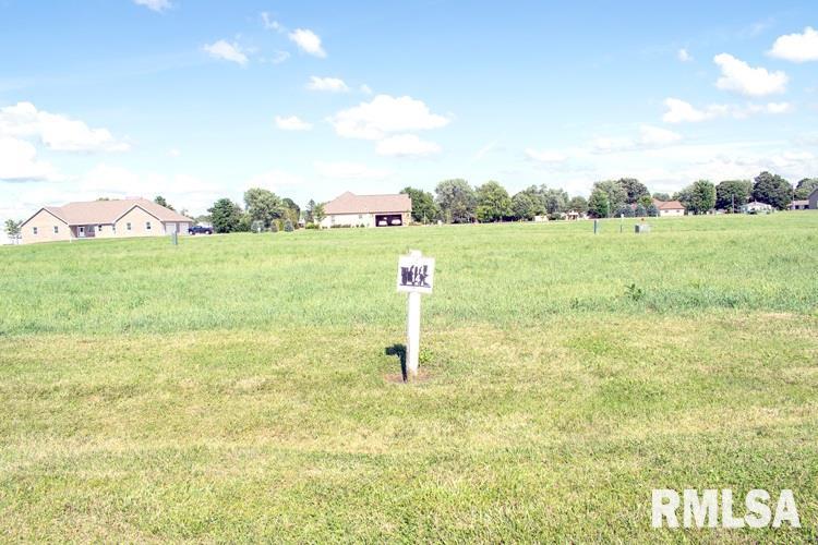 Lot 14 Iron Horse Property Photo - Toluca, IL real estate listing