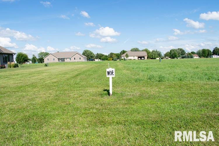 Lot 15 Iron Horse Property Photo - Toluca, IL real estate listing