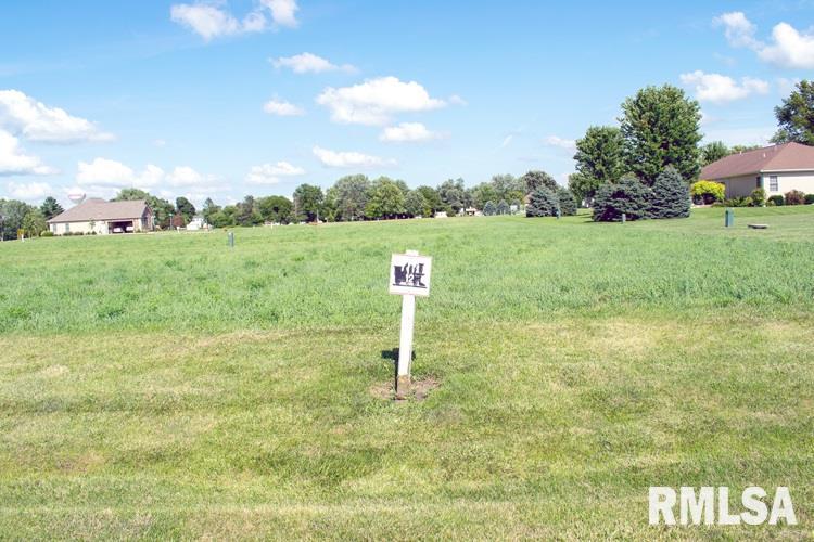 Lot 12 Iron Horse Property Photo - Toluca, IL real estate listing