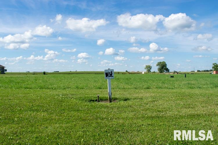 Lot 38 FIRST Property Photo - Toluca, IL real estate listing