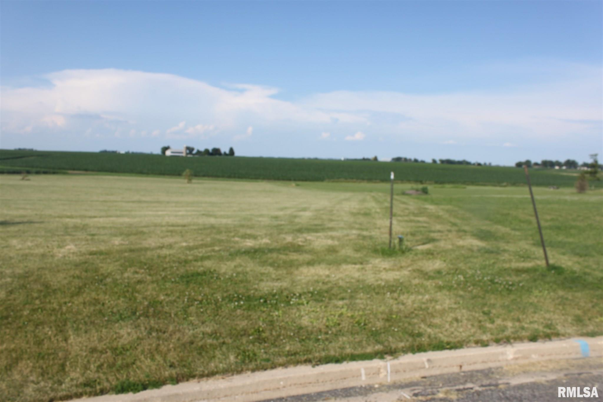 906 MOSER Property Photo - Roanoke, IL real estate listing