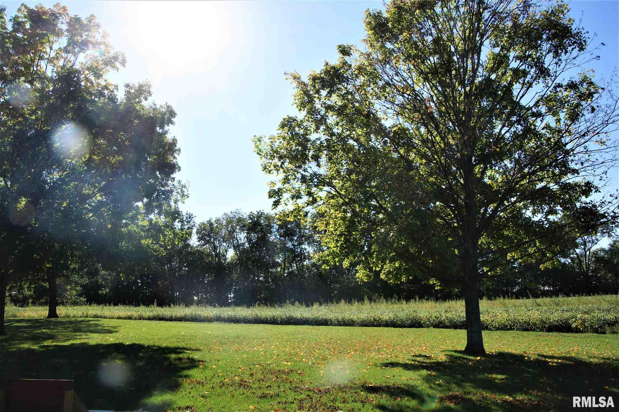 1409 LOT 2 N TOWN Property Photo - Princeville, IL real estate listing