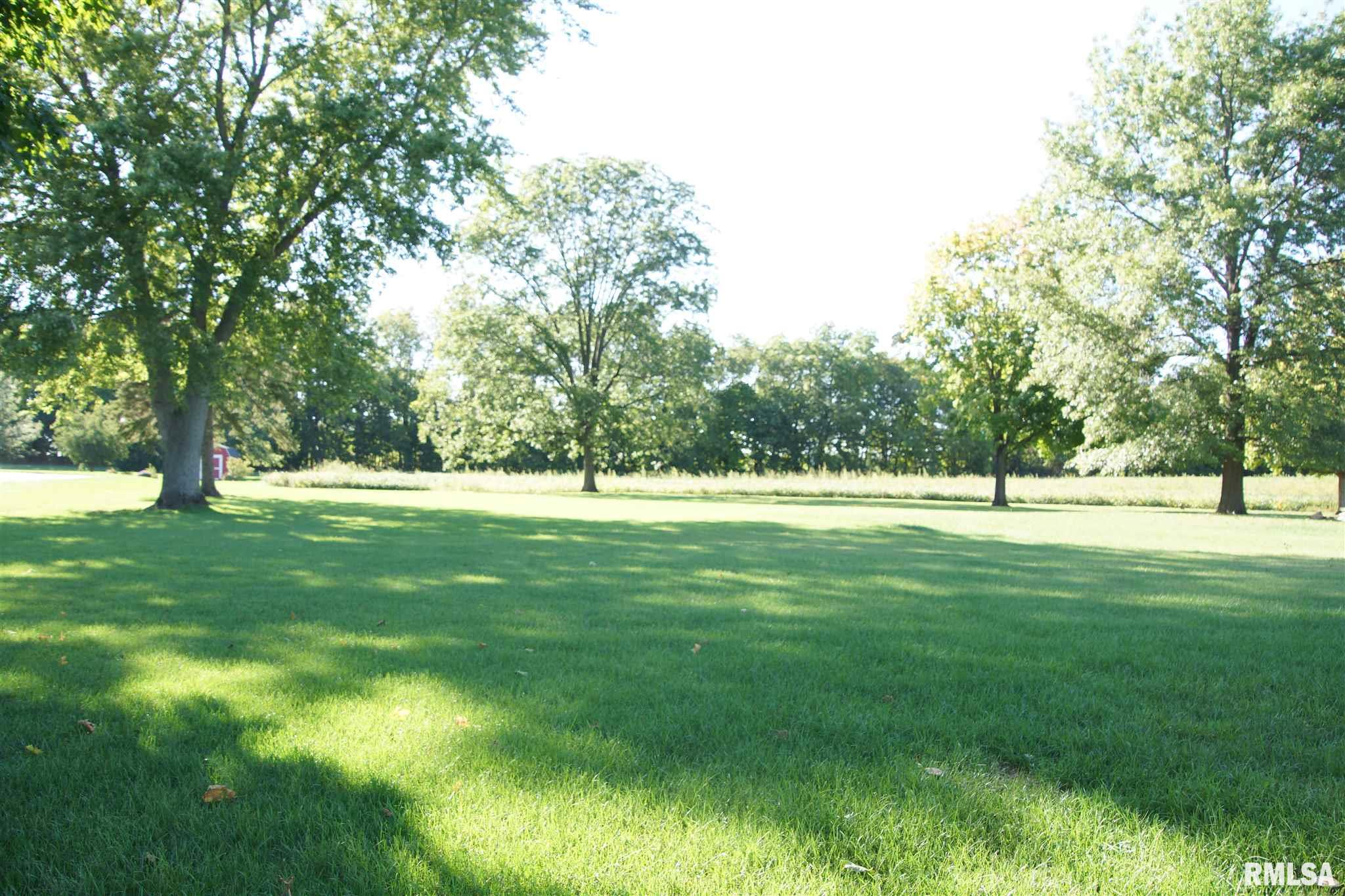 1409 LOT 1 N TOWN Property Photo - Princeville, IL real estate listing