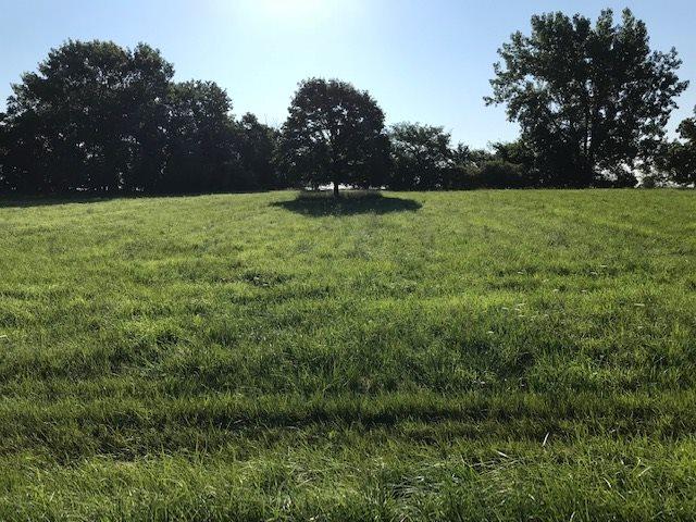 62 LAKE WILDWOOD Property Photo - Varna, IL real estate listing