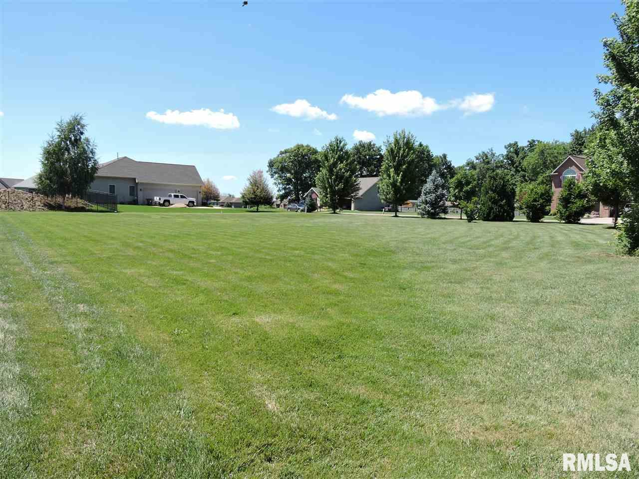 215 & 303 HIDDEN BROOK Property Photo - Groveland, IL real estate listing