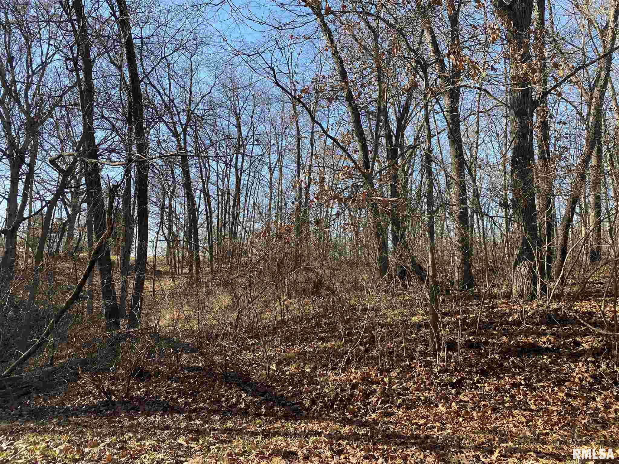 892 FAIR HAVEN Property Photo - Varna, IL real estate listing